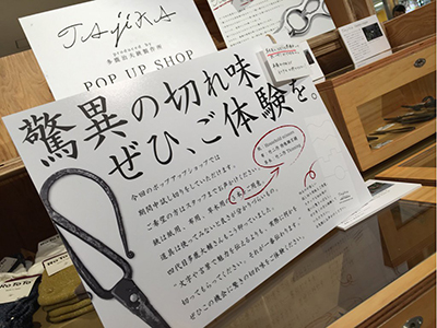 taika_popup.jpg